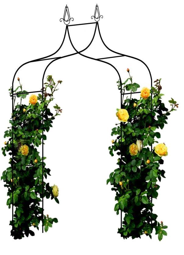 Vchodová oblouková pergola oblouk na růže
